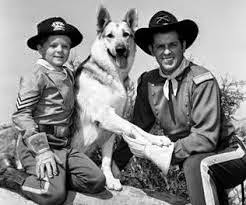 As Aventuras de Rin-Tin-Tin