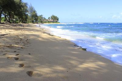 Kauai in Hawaii - A Beautiful Travel Destination