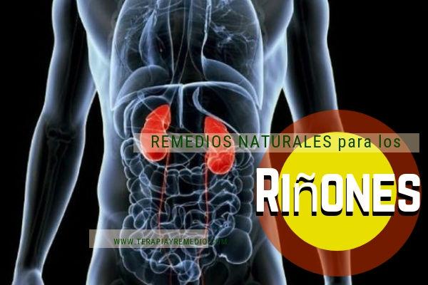 Remedios naturales para depurar los riñones.