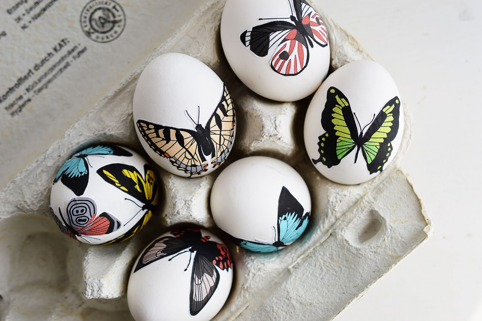 DIY Decoupage Easter Eggs | Butterfly Anatomy | Motte's Blog