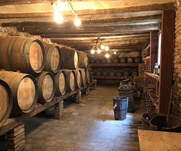 Crianza del vino, bodega Scala Dei, Priorat, Garnacha