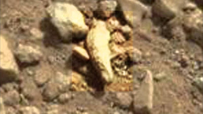 Another finger discovered on Mars now it makes it two.
