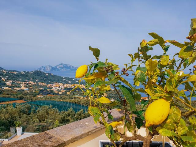 Sorrento, Villa Eliana. Vista su Capri dalla terrazza della suite