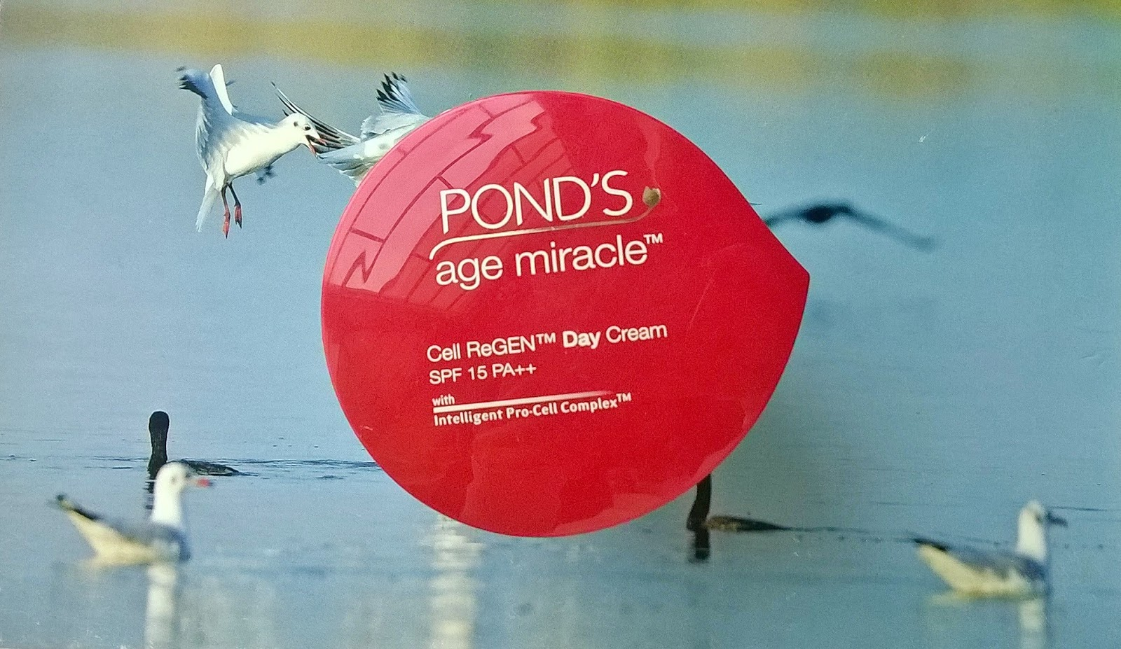 Beauty And Dewdrop Blog Pakistan Ponds Age Miracle Day Cream Jar 50 G Start On Anti Wrinkle Creams Thats Why I Gave This To My Mom Questioned Her About The Performance After A Couple Of Weeks