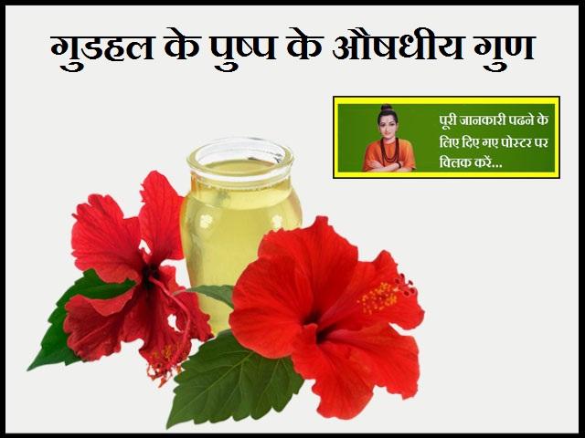 Medicinal Properties of Hibiscus Flower-गुडहल के पुष्प के औषधीय गुण