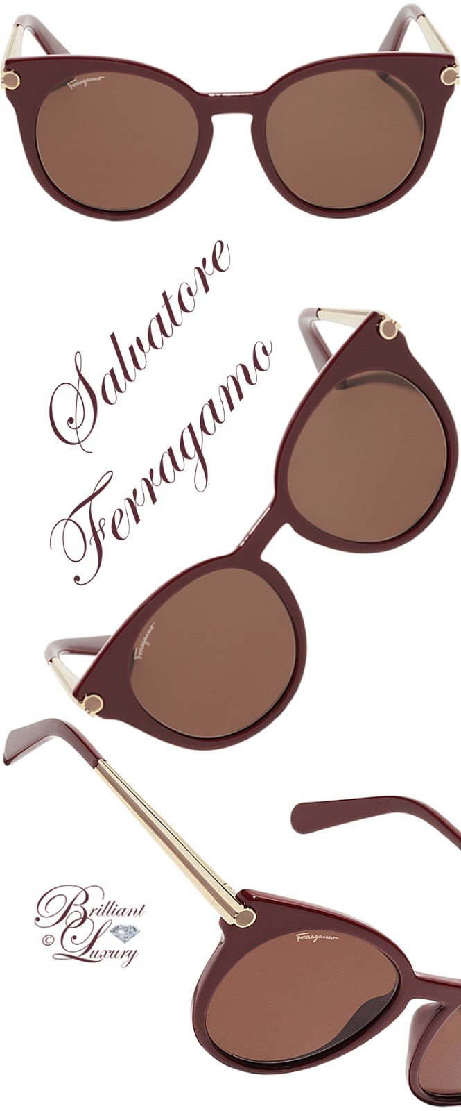 Brilliant Luxury ♦ Salvatore Ferragamo Sunglasses