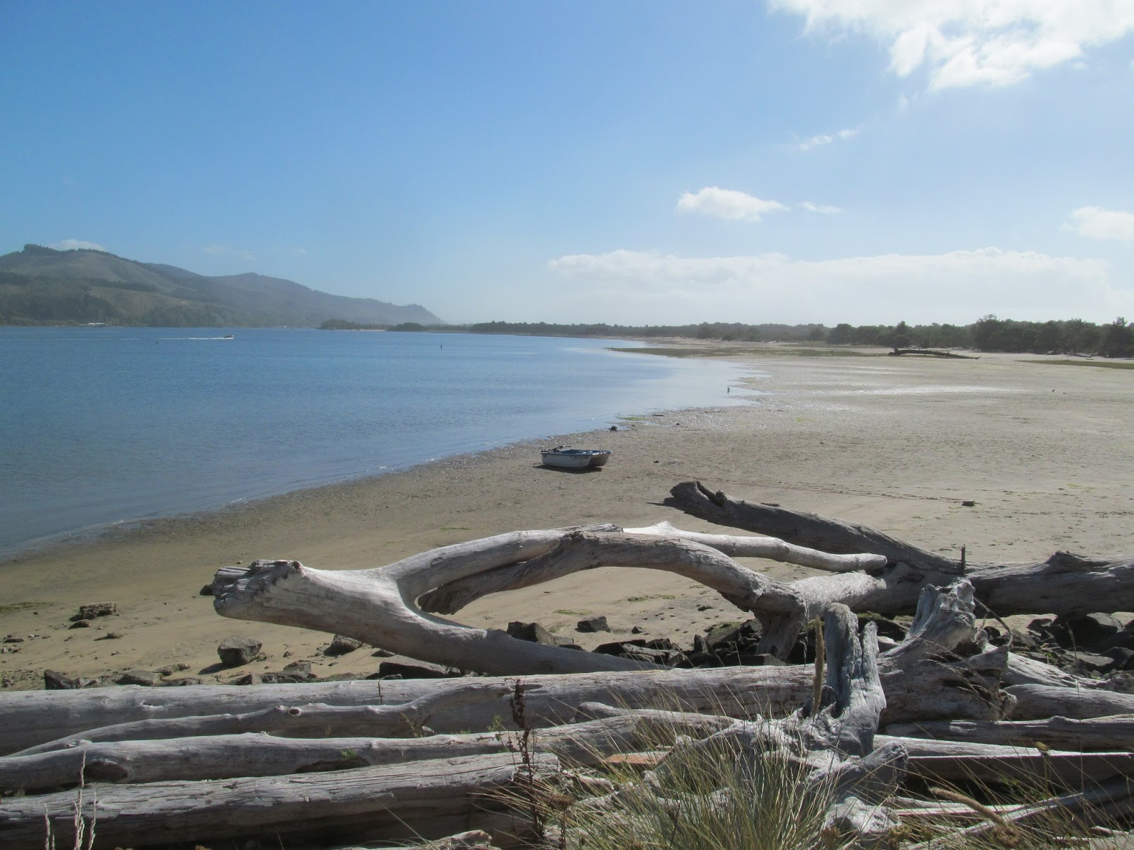 Left coast mumblings by colin t paterson manzanita for Nehalem river fishing