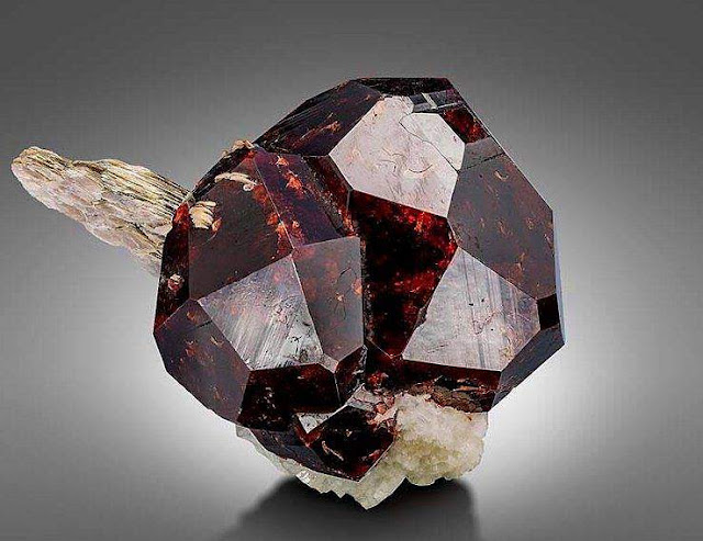 Almandine Garnet Crystal with Muscovite crystals