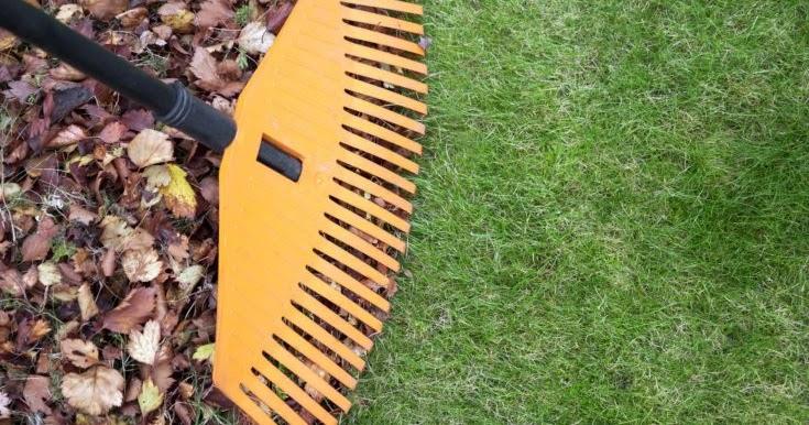 Elección del vacío de hojas sobre los rastrillos tradicionales 40