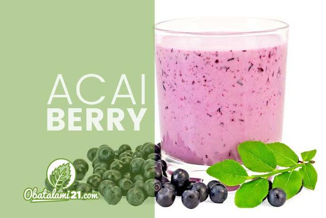 17 Manfaat Buah Acai Berry Untuk Kesehatan