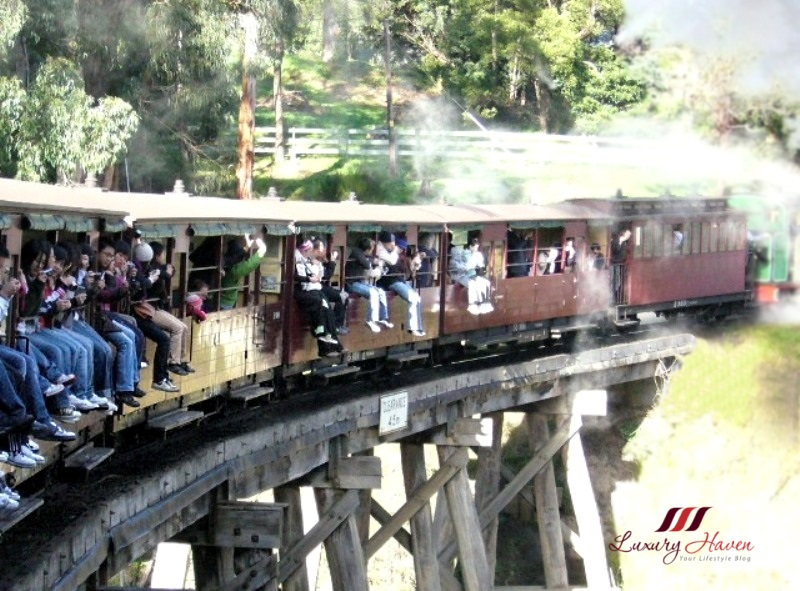 australia puffing billy railway sticking legs out
