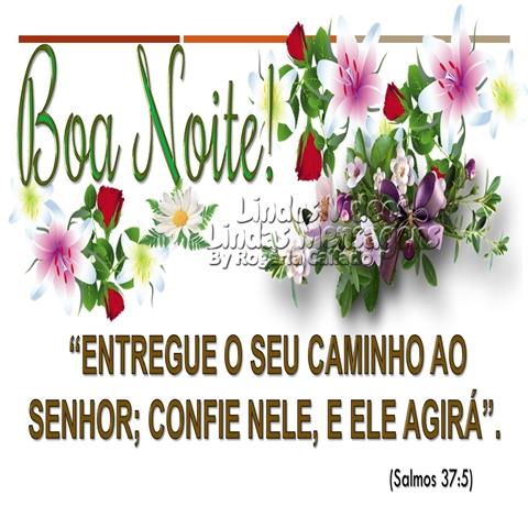 """""""ENTREGUE O SEU CAMINHO AO   SENHOR; CONFIE NELE, E ELE AGIRÁ"""".  (Salmos 37:5) Boa Noite!"""