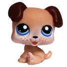 Littlest Pet Shop Singles Puppy (#143) Pet