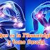Que es la Fibromialgia y Como Curarla