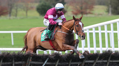 Samcro Cheltenham Novice Hurdle Hope