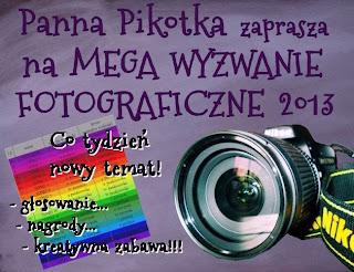 http://misiowyzakatek.blogspot.com/2013/08/mega-wyzwanie-foto-2013.html