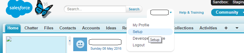 how to find api name in salesforce