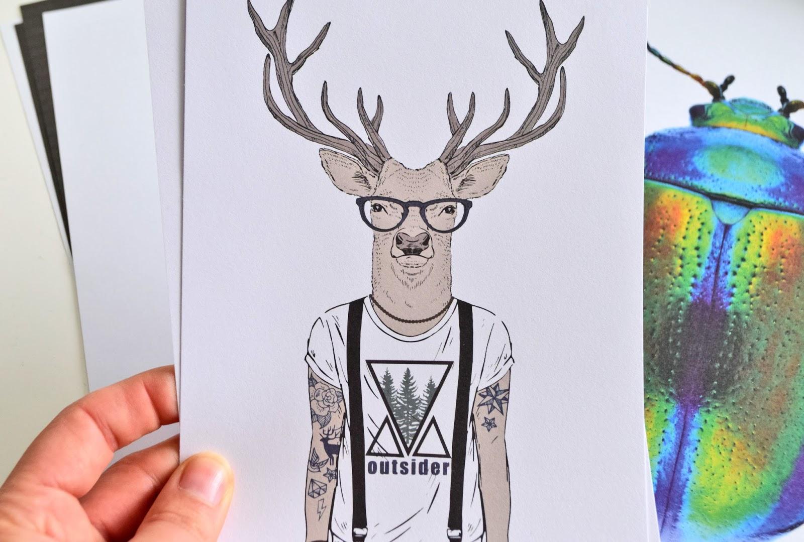 ilustracje ze zwierzętami