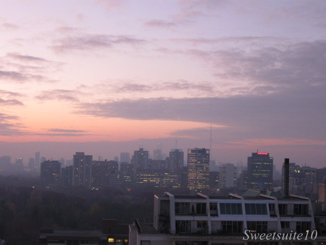 View of the Toronto Skyline at sunset