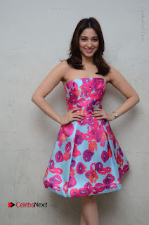 Actress Tamanna Latest Images in Floral Short Dress at Okkadochadu Movie Promotions  0065.JPG