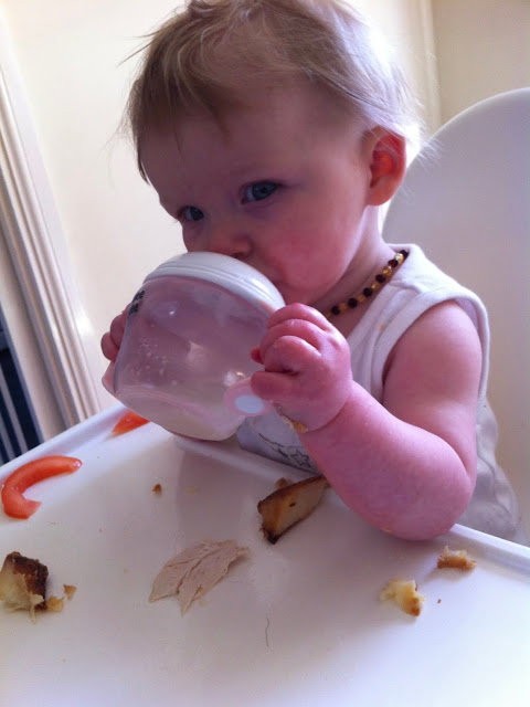 A baby drinking water sitting in a white ikea antilop highchair with food in front of her