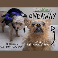 tickease tick removal tool giveaway