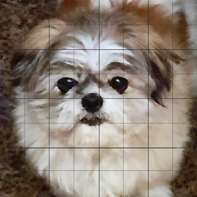 """Sophie"" photo cropped and 8x8 inch grid added in one inch squares."