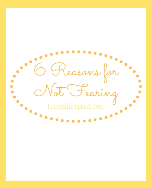 Frog's Lilypad: 6 Reasons for Not Fearing -There are many reasons to not fear because of Jesus. These are just six reasons for not fearing.