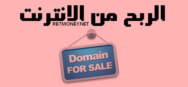 الربح من الانترنت عن طريق شراء وبيع الدومينات