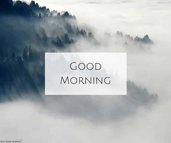 good morning images nature hd