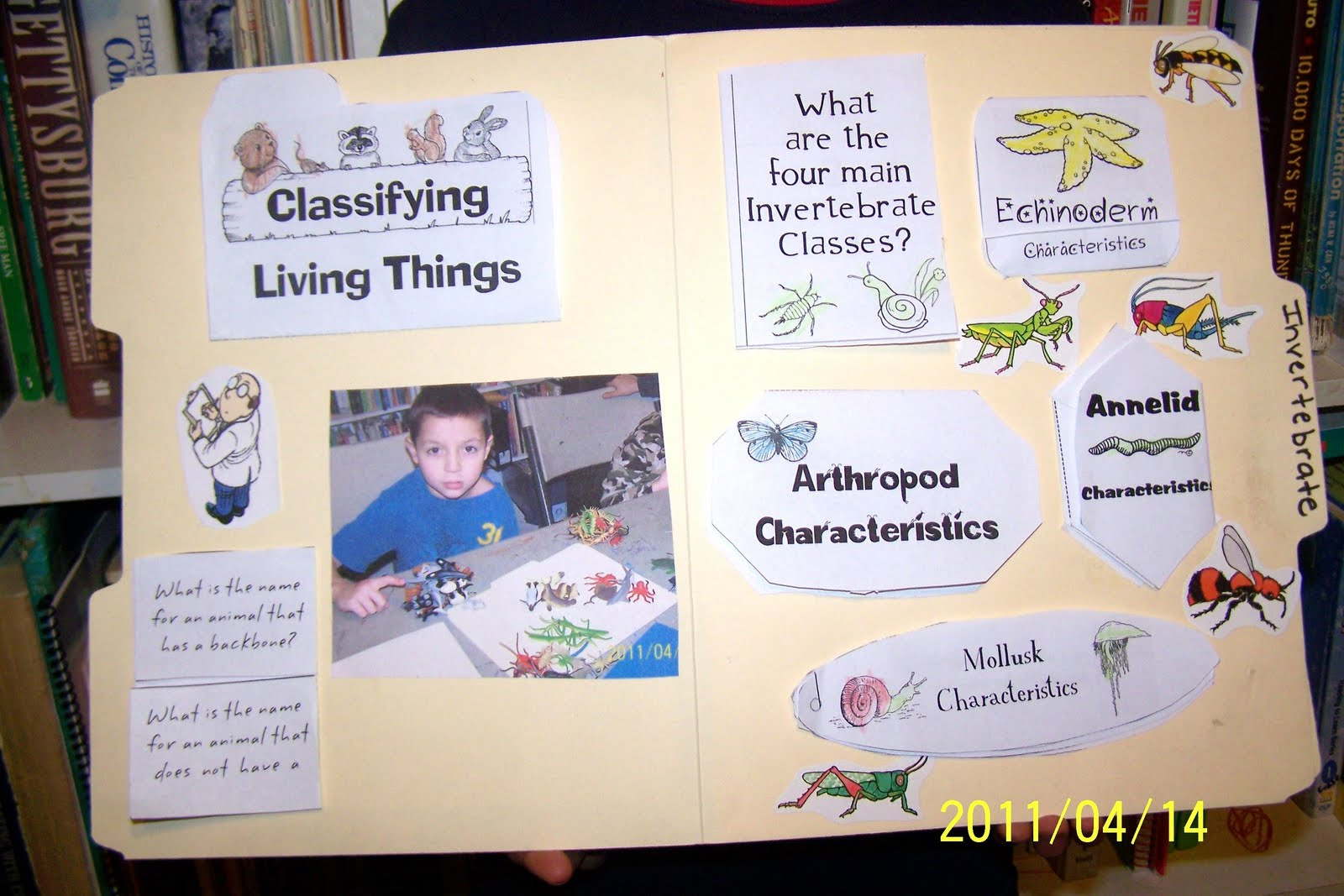 My Father S Sheep Wb 30 Animal Classification Lapbook