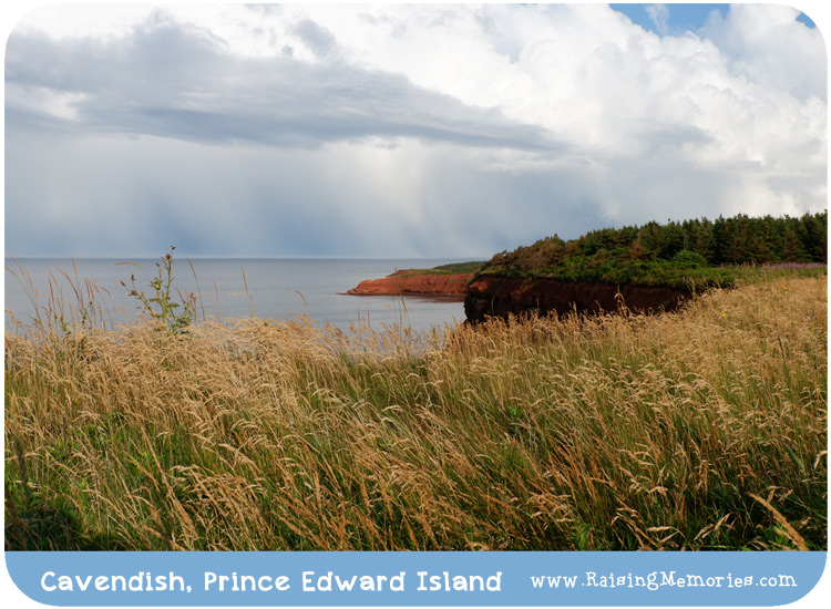 PEI Nature Travel Photography