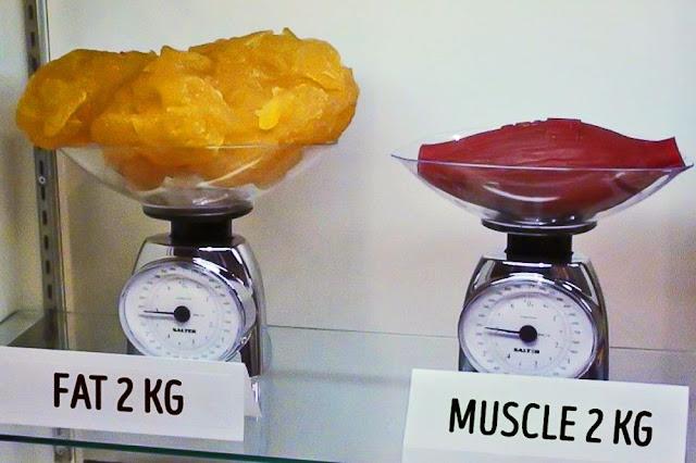 2 kg grasime vs 2 kg muschi
