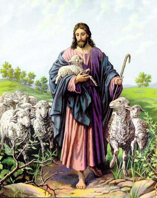 Resultado de imagem para imagens do bom pastor jesus
