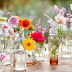Seven Ways to Spring into Spring