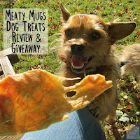 Review and Giveaway for Meaty Mugs Jerky Dog Treats