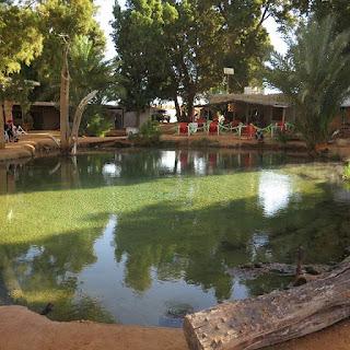 Oasis de Ksar Ghilane