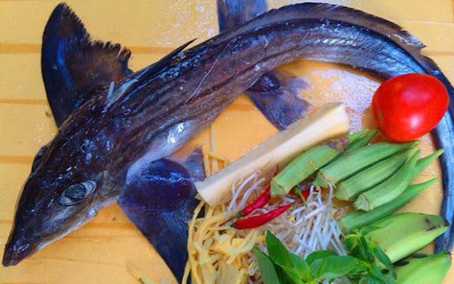 """Loài cá được mệnh danh là """"mỹ nhân ngư""""."""