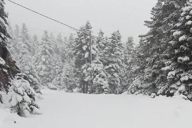 Μάρτης γδάρτης: Χιόνισε στην Αρκαδία