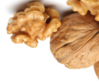 Walnut (Akhrot - Dry Fruits)  - BMI And Weight Change