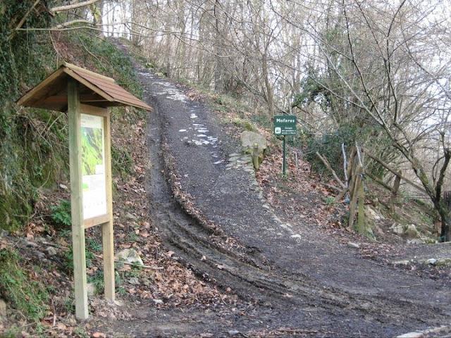 Rutas Montaña Asturias: Camino al pico Sienra