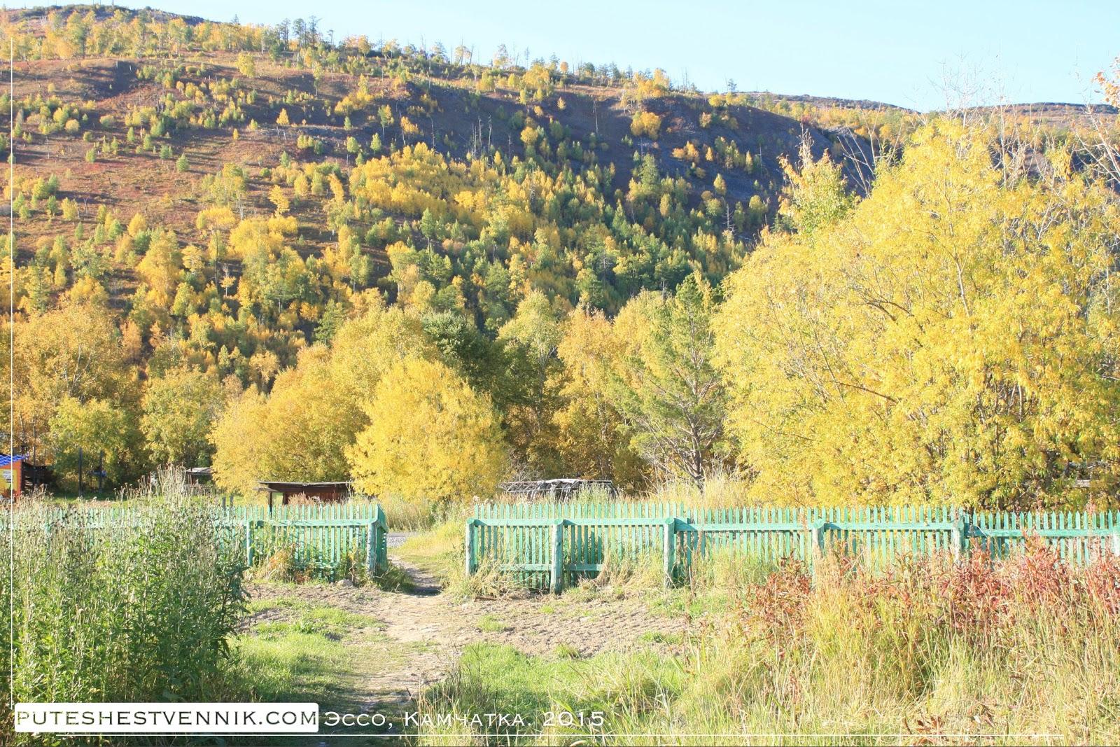 Камчатские сопки осенью в солнечный день
