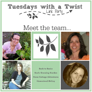 Tuesday with a Twist Link Party