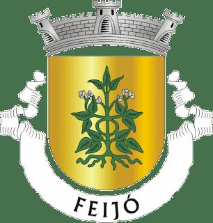 Feijó