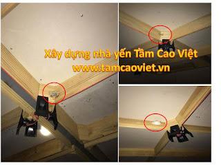 to-chim-tai-nha-yen-anh-toan-q12-tphcm