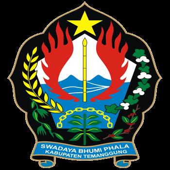 logo Temanggung TV