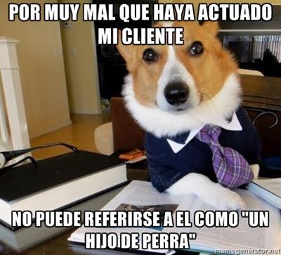 perro abogado meme