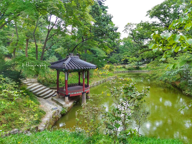 aeryeonji pond di Changdeokgung Palace & Secret Garden/Huwon (창덕궁과 후원)