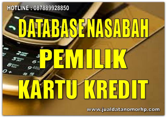Jual Database Pemilik Kartu Kredit 2016