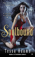 Review: Soulbound by Tessa Adams (18+)